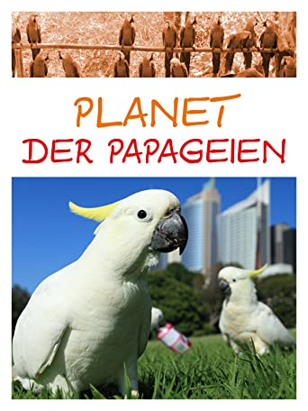 Planet der Papageien