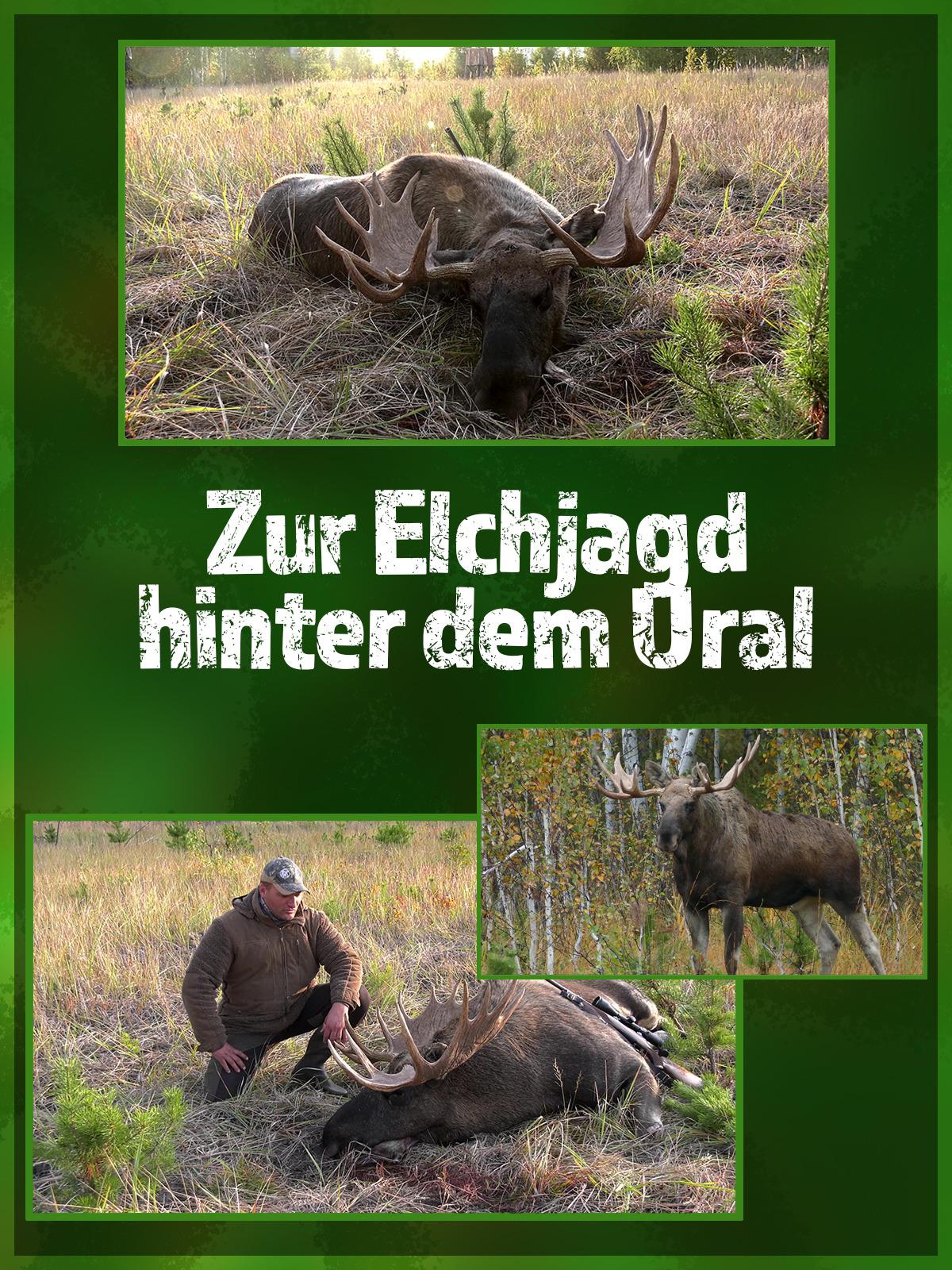 Zur Elchjagd hinter dem Ural