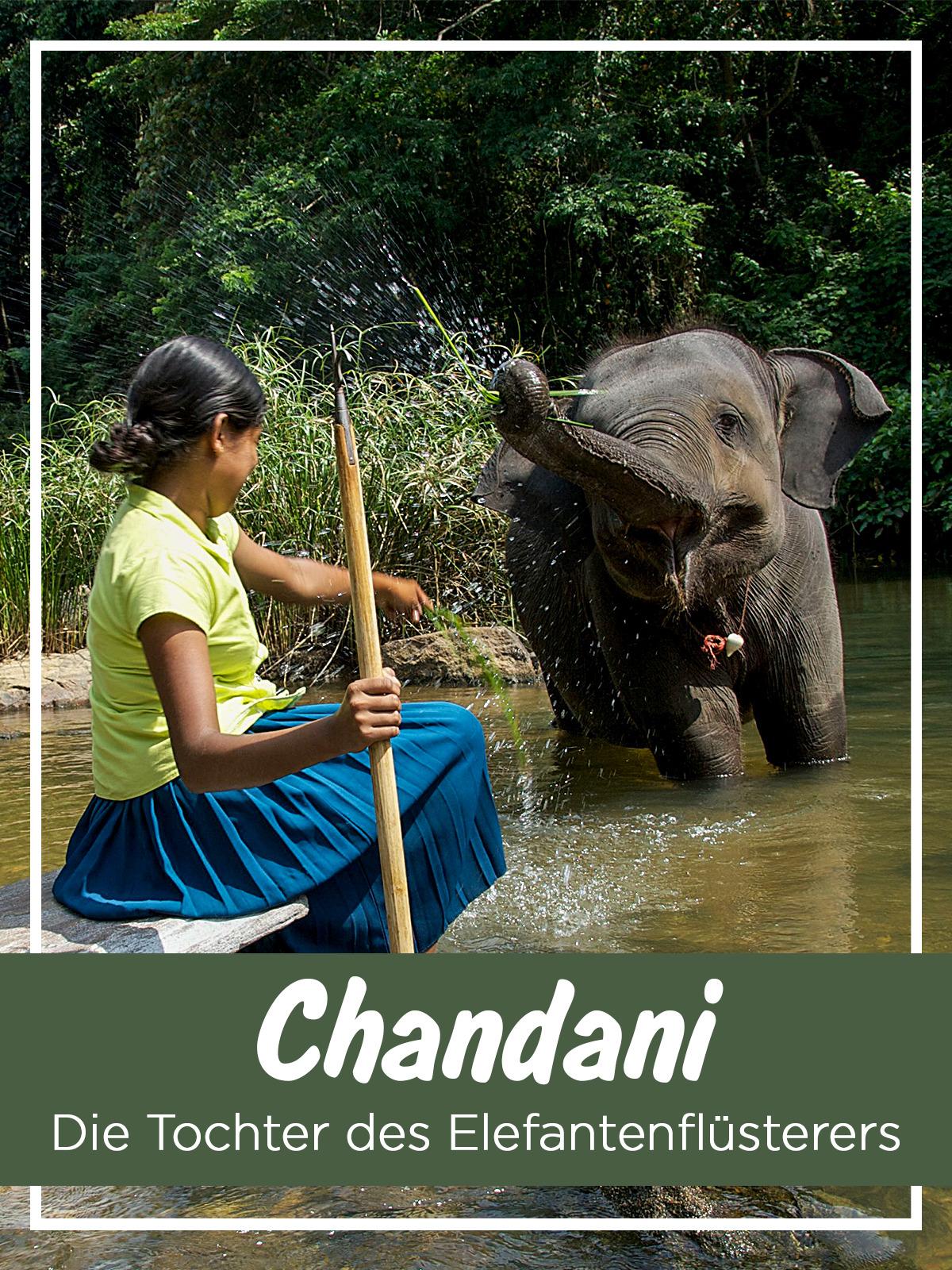 Chandani - Die Tochter des Elefantenflüsterers