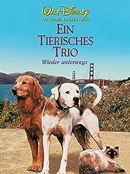 Ein tierisches Trio - wieder unterwegs