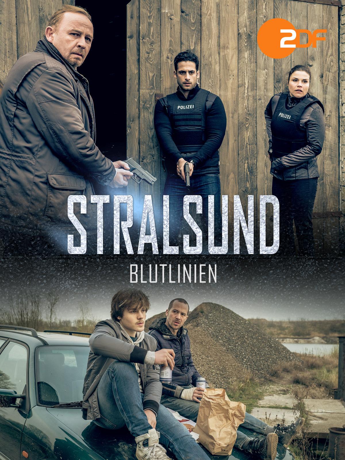 Stralsund - Blutlinien