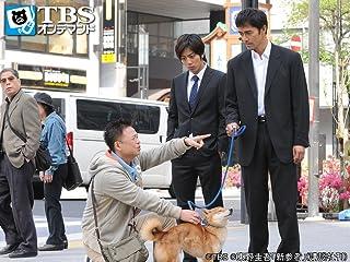新参者 (2010・ドラマ) 時計屋の犬