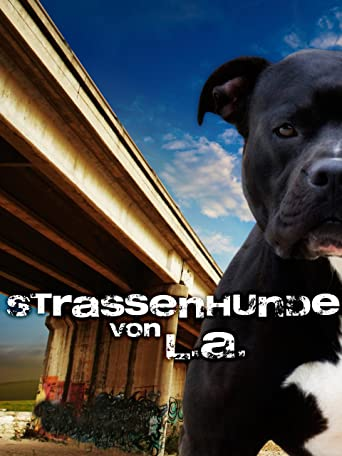 Strassenhunde Von L.A.