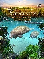 Abenteuer Everglades - Die Manatis des Crystal River