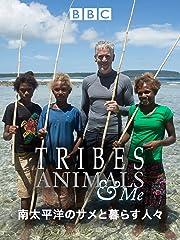 南太平洋のサメと暮らす人々