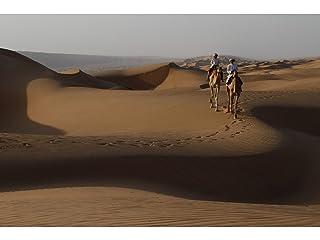 ワイルド・アラビア〜神秘の王国 第1話 オリックス〜伝説のユニコーン