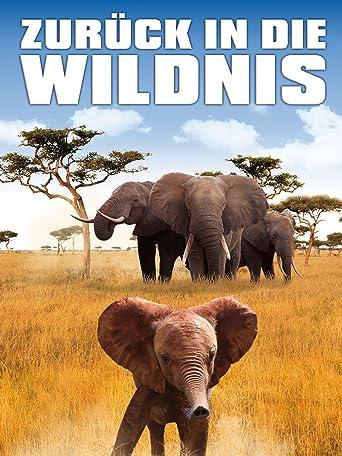 Zurück in die Wildnis - Ein kleiner Elefant auf dem Weg in die Freiheit
