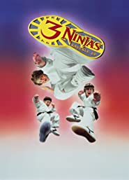 3 Ninjas Fight & Fury