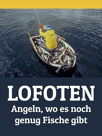 Lofoten angeln wo es noch genug Fische gibt