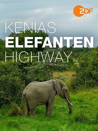 Kenias Elefanten-Highway