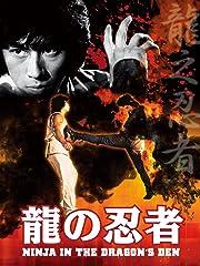 龍の忍者(NINJA IN THE DRAGON'S DEN)