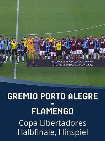 Gremio Porto Alegre -Flamengo