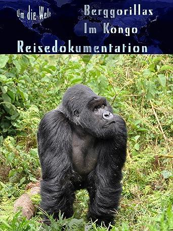 Um die Welt: Berg-Gorillas im Kongo