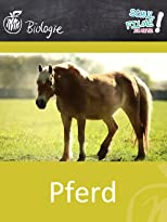 Pferd - Schulfilm Biologie