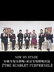 宝塚歌劇 NOW ON STAGE 星組宝塚大劇場・東京宝塚劇場公演 THE SCARLET PIMPERNEL