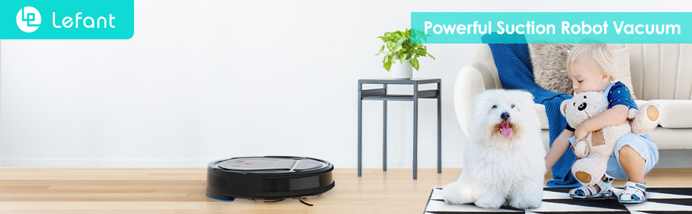 2-in-1 Vacuuming and Mopping