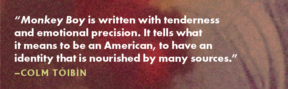Written with tenderness and emotional precision.  Tells what it means to be an American Colm Toibin