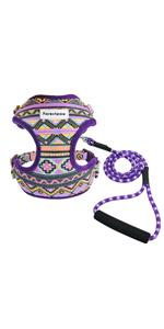 purple dog harness and leash set