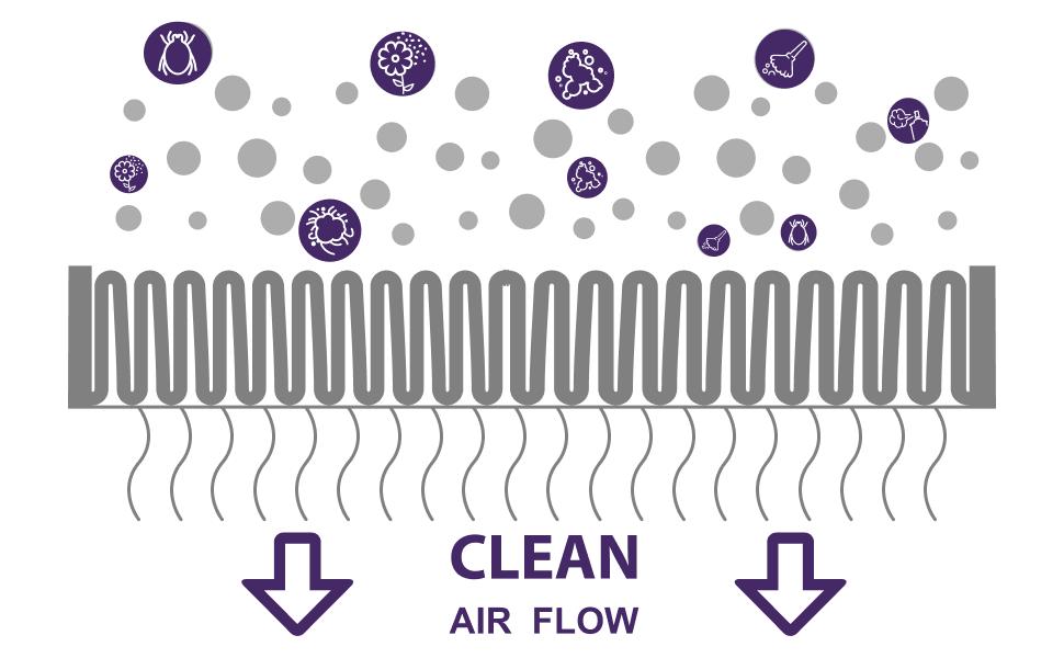 Air Beast Air Flow