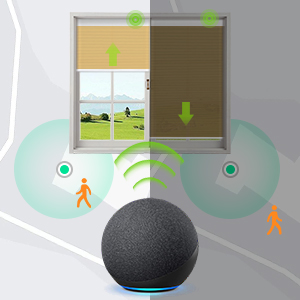 blind with remote
