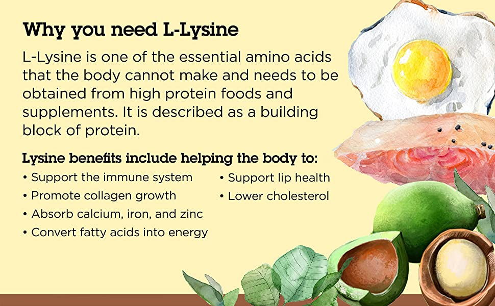 Image: Why you need L-Lysine
