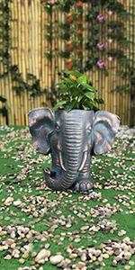 elephant head planter