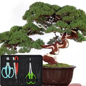 This bonsai tool kit are loved by everyone because they are very durable and reliable.