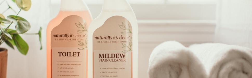 Toilet and Mildew Stain Cleaner products near plant and towels