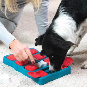 Nina Ottosson Outward Hound Dog Brick Interactive game puzzle toy