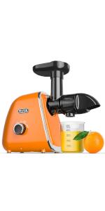 cold press masticating juicer