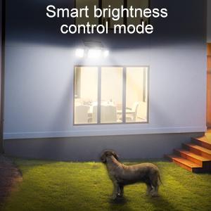 smart light