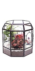 birdcage shape terrarium