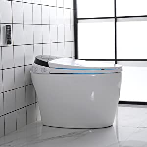 smart toilet with remote control