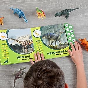 Dinosaur Fun Facts