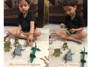Make your own Animal Kingdom
