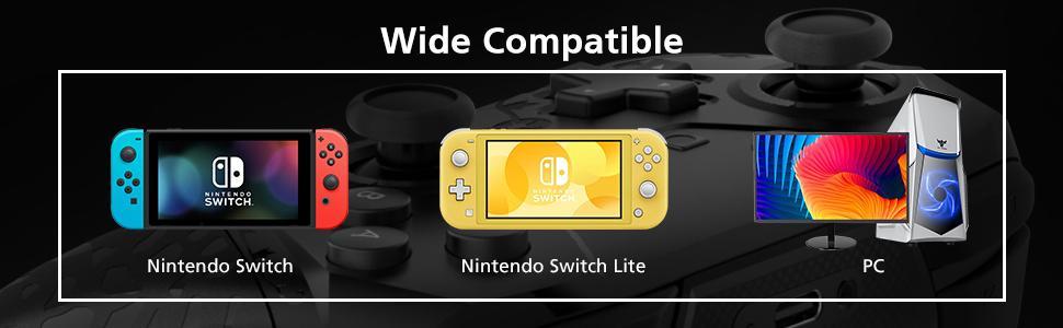 switch wireless controller