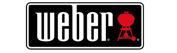 logo bbq grill