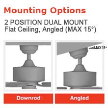 2 position dual mount