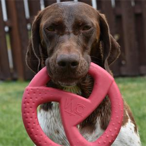 Dog with red WO disc in its mouth