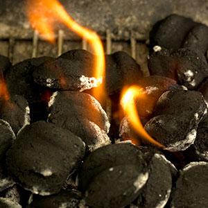 Natural charcoal starter
