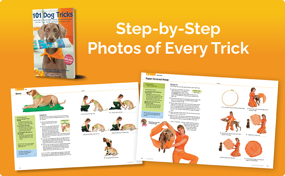 Photos of pages featuring the dog tricks
