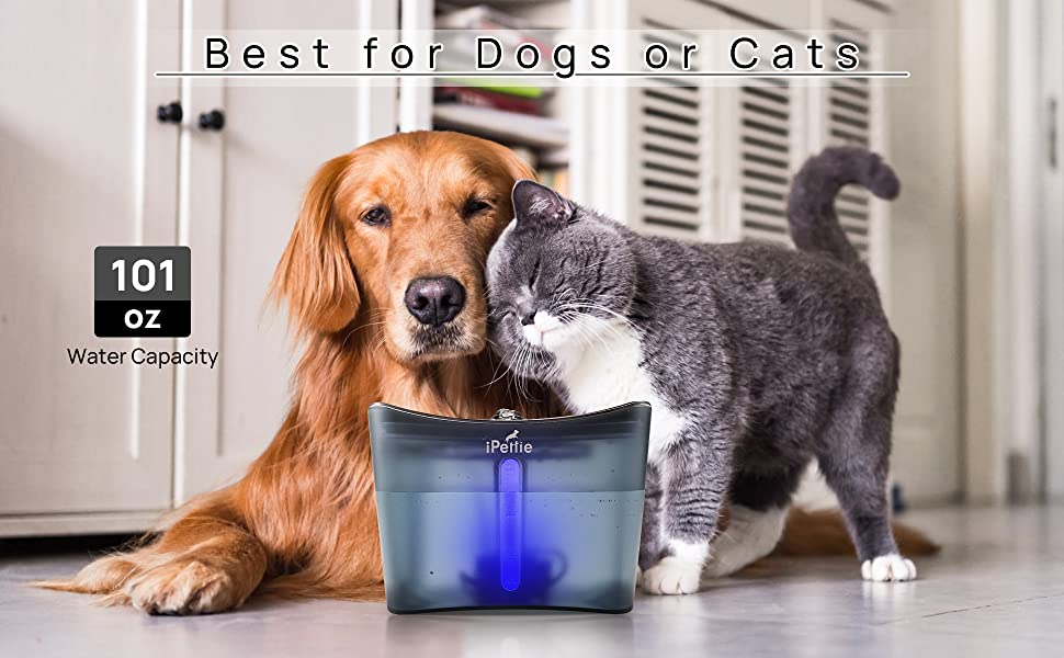 Cat Water Fountain with LED Light Cat Drinking Fountain with Filter Automatic Pet Water Fountain