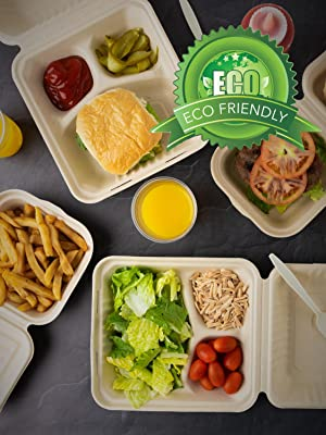 Bagasse Clamshell Takeout Containers Take Out to Go Food Containers with Lids for Lunch Leftovers