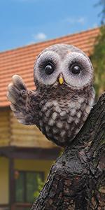 Owl tree hugger