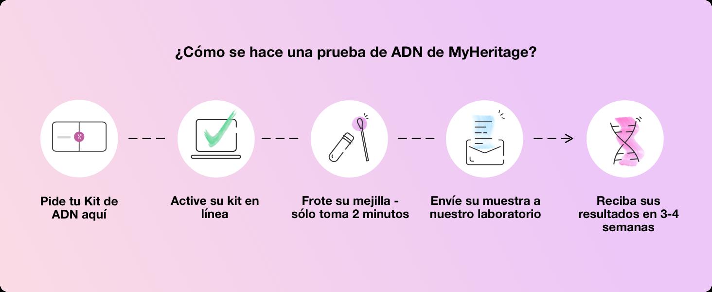¿Cómo se hace una prueba de ADN de MyHeritage?