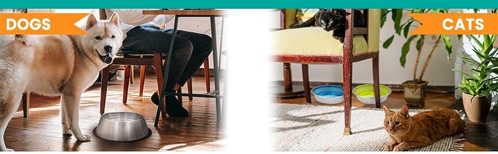 dog bowls for large dogs cat food bowls dog food bowls dog supplies cat feeder cat bowl
