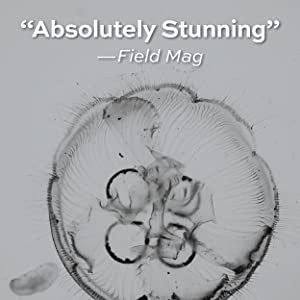 """Absolutely stunning"" - Field Mag"