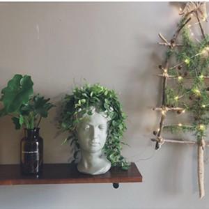 Female Head Design Succulents Plant Pot