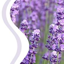 Lavender Tea Tree, Shampoo Bar,Conditioner,planet,organic,natural,hair,protect,handmade,nature