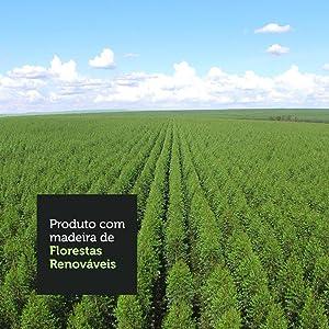 imagem mostrando uma floresta renovável